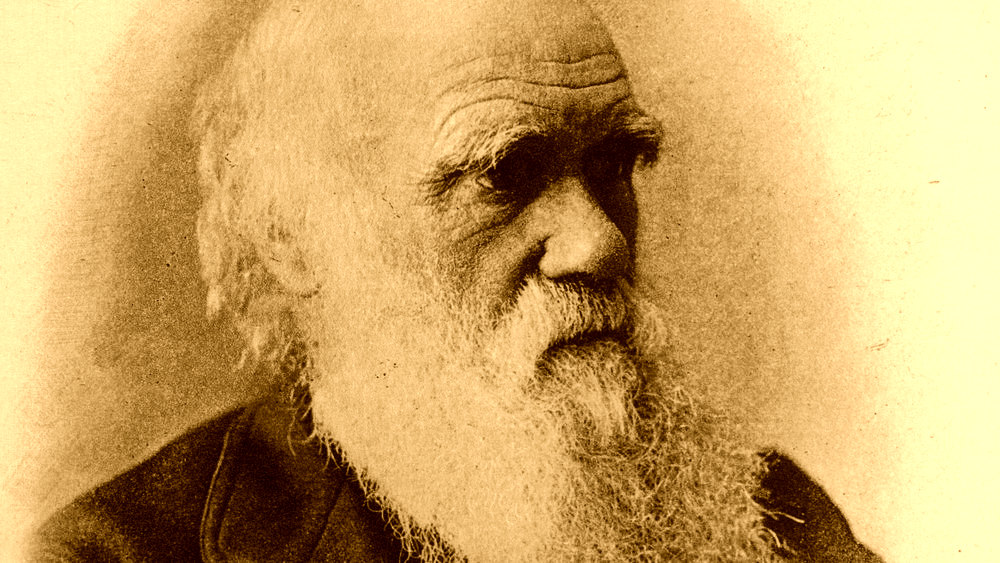 """an argument in favor of scientific evolution in the creation of man Science without religion is lame religion without science is blind  he  speculates that this second reference to light on day four of genesis refers to the  evolution of vision if there  """"then god created man in his own image."""